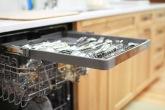 Charter Oaks Kitchen, Dishwasher Detail
